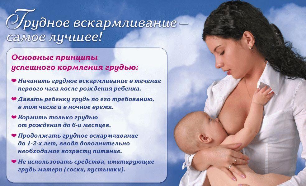 Принципы успешного кормления грудью
